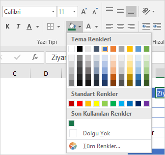 Ofis Teması Rengi